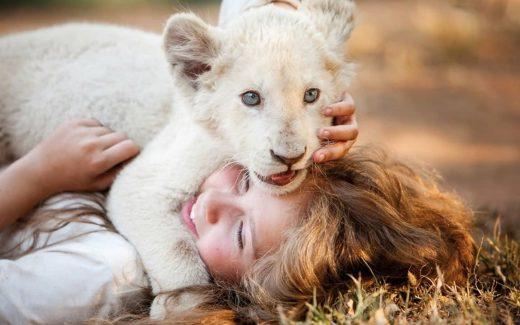 mi mascota es un leon - portada