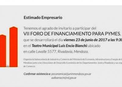 VII Foro de financiamiento de Pymes.