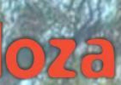 """3º fecha del """"Mendoza Safari"""" se disputará en Rivadavia."""