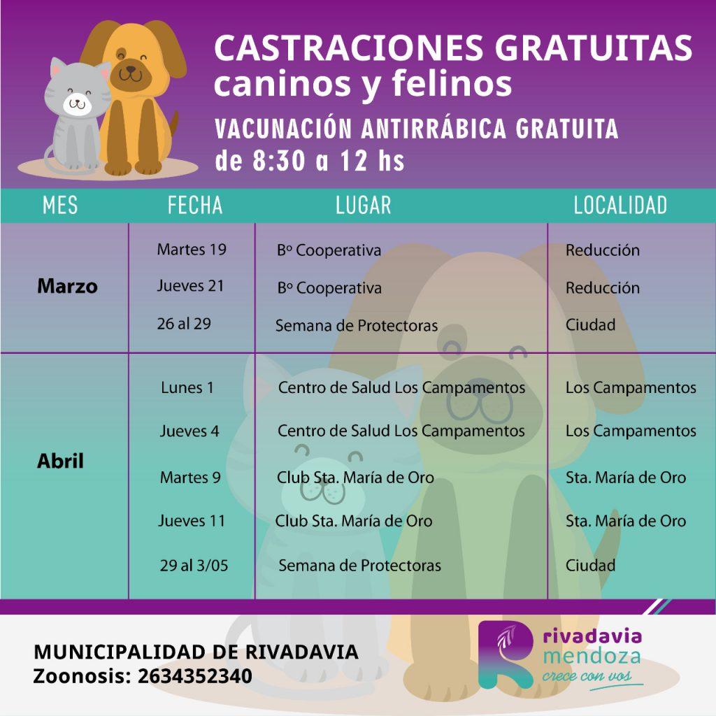 cronograma de zoonosis mensual