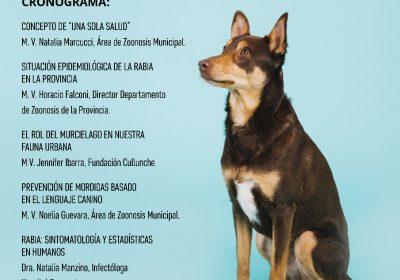 zoonosis nuevo plan salud