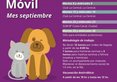 zoonosis_septiembre
